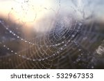 dew on a spider web | Shutterstock . vector #532967353