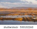Floodplain Meadow Near Ipoly...