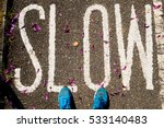 shoe and slow text with pink... | Shutterstock . vector #533140483