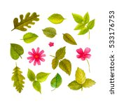 bright collection with forest...   Shutterstock . vector #533176753