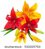 bouquet of lilies red and... | Shutterstock . vector #533205703