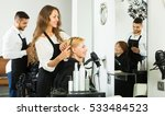 happy woman hairdresser doing... | Shutterstock . vector #533484523