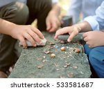 children's hands and nuts | Shutterstock . vector #533581687