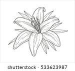 flower monochrome vector... | Shutterstock .eps vector #533623987