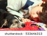 boy and little puppy sleeping... | Shutterstock . vector #533646313