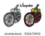 mangosteen fruit. hand drawn...   Shutterstock .eps vector #533673943
