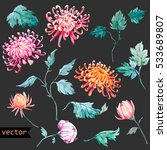 vector watercolor  floral set.... | Shutterstock .eps vector #533689807
