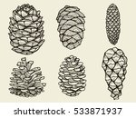 pine cones of cedar spruce fir... | Shutterstock .eps vector #533871937