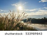 beautiful rural landscape with... | Shutterstock . vector #533989843