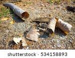 dry peel wood in the garden by... | Shutterstock . vector #534158893