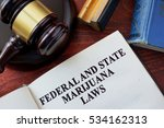 federal and state marijuana... | Shutterstock . vector #534162313