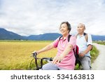 happy senior  couple riding... | Shutterstock . vector #534163813