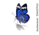 blue purple monarch butterfly... | Shutterstock . vector #534237913