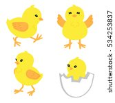 set of cute little chickens in...