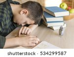 Tired Schoolboy Asleep On A...