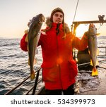 Fisherman On Boat With Cod In...