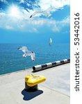Maritime Boulevard And Gulls