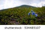 Bell Carpathians At An Altitud...