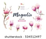 watercolor painting magnolia... | Shutterstock . vector #534512497