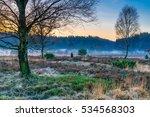 Lueneburg Heath Nature Park In...
