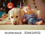 Little Baby Boy With  Dog Lyin...
