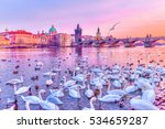 Swans On Vltava River  Towers...