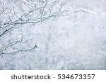 winter background | Shutterstock . vector #534673357