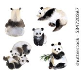 set of six panda bears ... | Shutterstock . vector #534720367