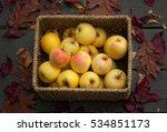 home grown golden apples in a...   Shutterstock . vector #534851173