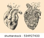 Illustration Of 2 Hearts...