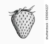 hand drawn strawberry... | Shutterstock .eps vector #535004227