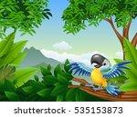 cartoon toucan in the jungle | Shutterstock .eps vector #535153873