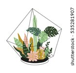 hand drawn  contained tropical... | Shutterstock .eps vector #535281907