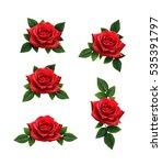 set of red rose flowers... | Shutterstock . vector #535391797