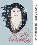 winter owl   vector art   owl... | Shutterstock .eps vector #535884247