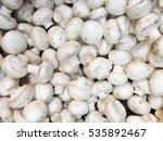 mushroom texture. mushroom... | Shutterstock . vector #535892467