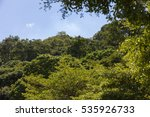 tropical forest with blue sky | Shutterstock . vector #535926733