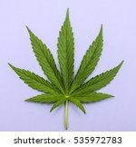 green fresh marijuana leaf with ... | Shutterstock . vector #535972783