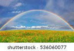 landscape with blossoming field ... | Shutterstock . vector #536060077