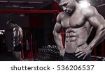 strong athletic man fitness... | Shutterstock . vector #536206537