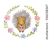 cute hedgehog animal for... | Shutterstock . vector #536238367