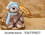 Teddy Bear Toy Holding