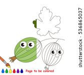 gooseberry to be colored  the... | Shutterstock .eps vector #536865037