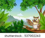 tropical forest with cartoon... | Shutterstock .eps vector #537002263