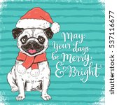 may your days be merry and... | Shutterstock .eps vector #537116677