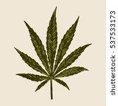 marijuana leaf drawing. sativa... | Shutterstock .eps vector #537533173