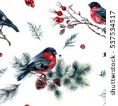 watercolor seamless pattern... | Shutterstock . vector #537534517