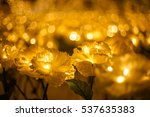 Gold Flower And Gold Bokeh Wit...
