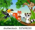 cartoon  forest scene with... | Shutterstock . vector #537698233