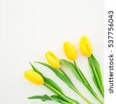Tulip Flowers. Flat Lay  Top...